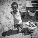 Le petit pêcheur des Caraïbes